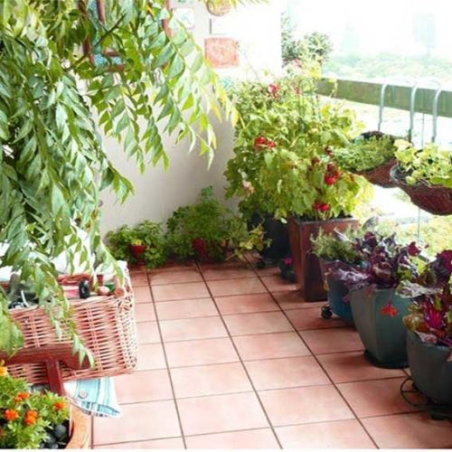 Grow An Apartment Patio Vegetable Garden By Redwood Living