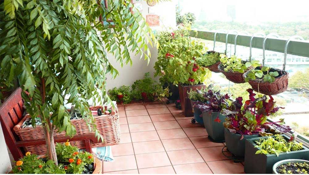 How to Create an Apartment Patio Vegetable Garden