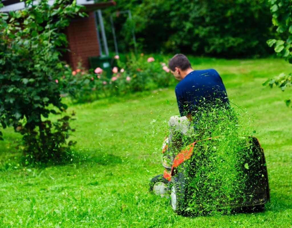 maintenance free from lawn care
