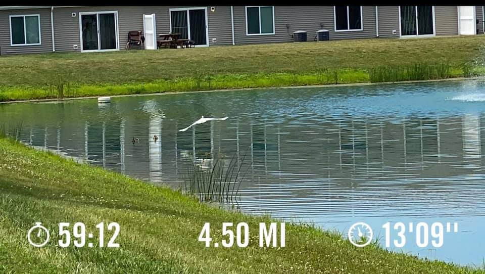 Redwood Canal Winchester Ohio Apartment Rentals Running Path Pond