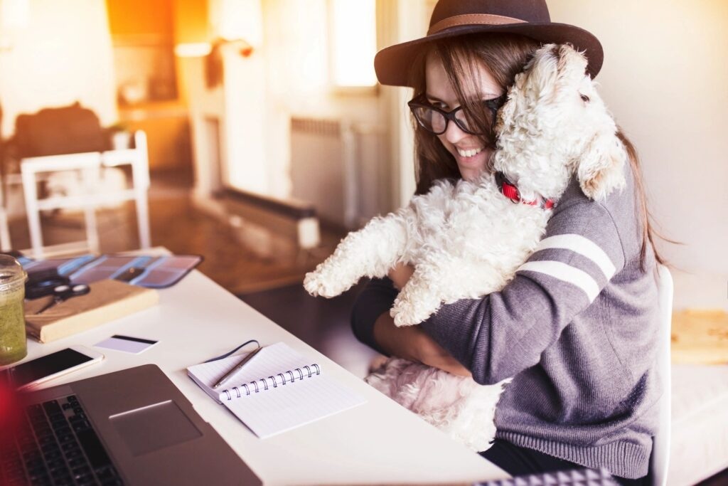 how to best move your dog from home to apartment
